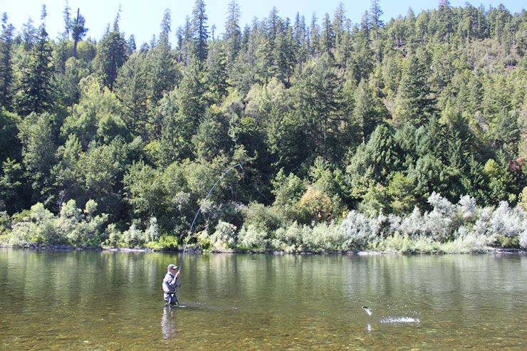 An angler plays a feisty Klamath River halfpounder
