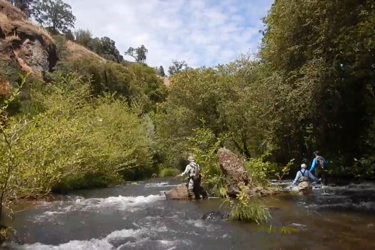 Small streams are ideal for learning to fly fish